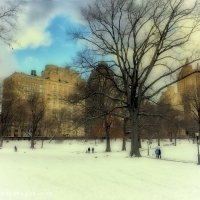 Mobile Photography: New York series 2 (White Central Park)