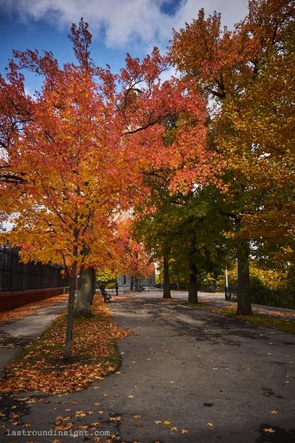 Highbridge Park, New York City.