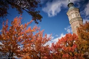Water Tower, Highbridge Park, New York City.