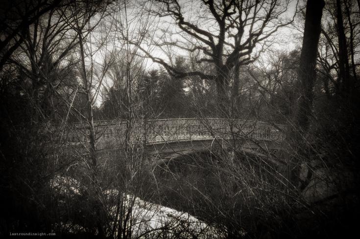 Central Park, New York City. Nikon D90
