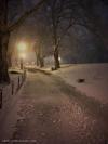 Highbridge Park, New York City. iPhone SE